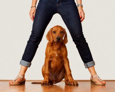 Maria and Dog